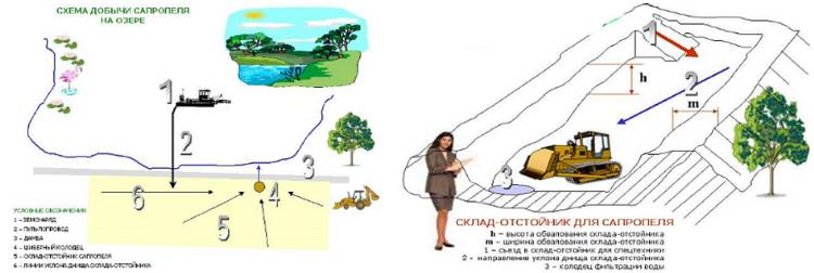 Схема технологического процесса добычи и обезвоживания сапропеля.
